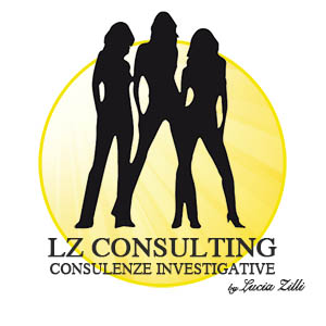 L.Z. Consulting